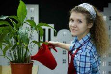 Проверить Деньги на Карточке Беларусбанк Через Интернет